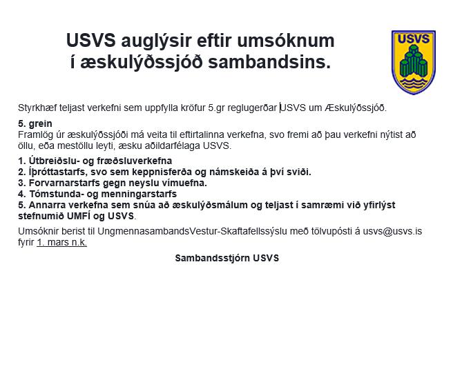 Auglýsing-Æskulýðssjóður